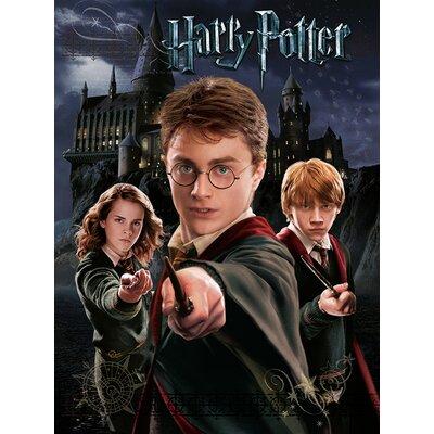 Art Group Harry Potter - Harry Ron Hermione Vintage Advertisement Canvas Wall Art