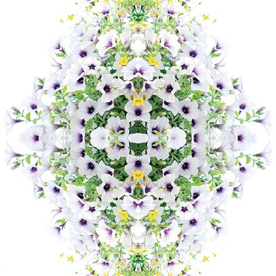 Art Group Alyson Fennell - Pretty Chelsea Petunia Canvas Wall Art