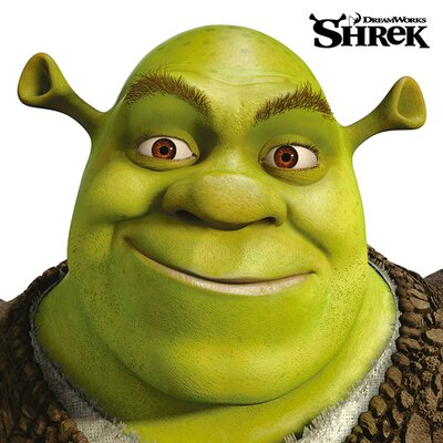Art Group Shrek - Face Canvas Wall Art