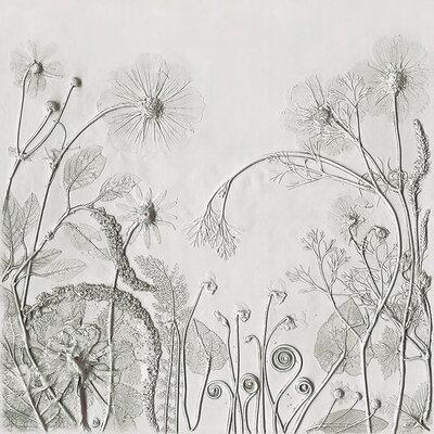 Art Group Rachel Dein - Cosmos Japanese Anemones Cyclamen and Californian Poppy Canvas Wall Art