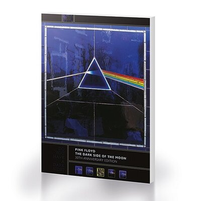 Art Group Pink Floyd - Dark Side of the Moon, 30Th Anniversary Canvas Wall Art