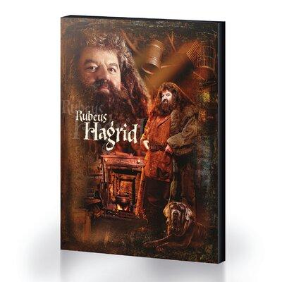 Art Group Harry Potter - Hagrid Vintage Advertisement Canvas Wall Art