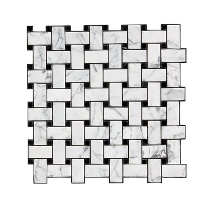 """1"""" x 2"""" Stone Mosaic Tile in Polished White"""