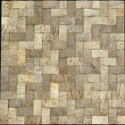 """0.75"""" x 1.5"""" Coconut Mosaic Tile in Matte Coconut and wood"""