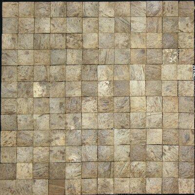 "0.94"" x 0.94"" Coconut Mosaic Tile in Multi"