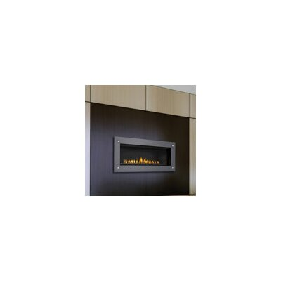 Napoleon Direct Wall Mount Natural Gas Fireplace