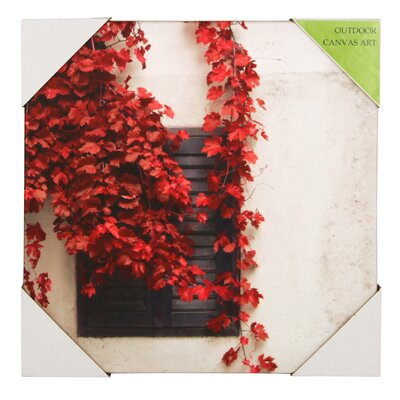 Pacific Lifestyle Ivy Photographic Print on Canvas