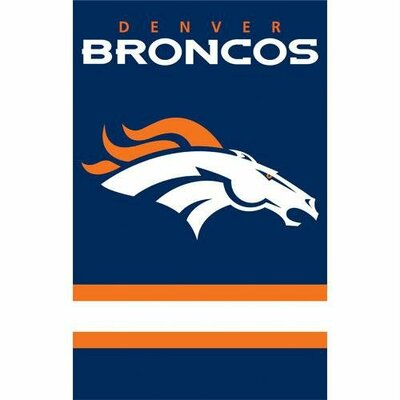 Party Animal Broncos Applique Banner Flag