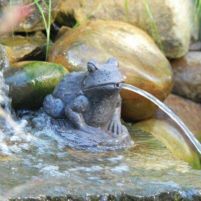 Resin Frog Spitter