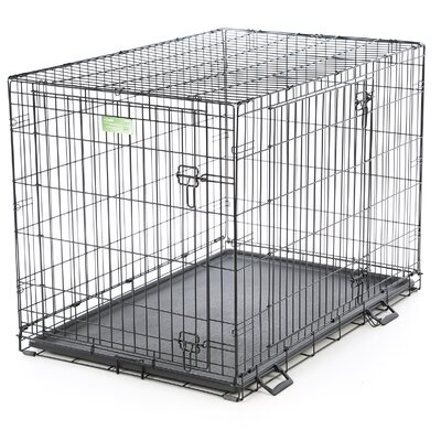 """iCrate Double Door Pet Crate Size: Large (30"""" H x 28"""" W x 42"""" L)"""