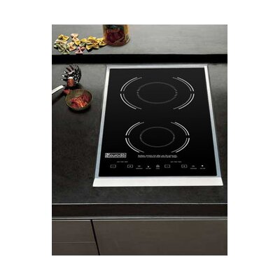 Electric Double Drop-Introduction Cooker