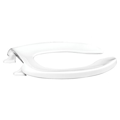 Plastic Elongated Toilet Seat Finish: White, Hinge Type: Self-Sustaining Stainless Steel