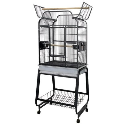 A&E Cage Co. Victorian Open Play Top Bird Cage with Stand
