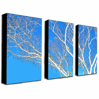 """Trademark Fine Art """"Spring Tree"""" by Kathie McCurdy 3 Piece Photographic Print on Canvas Set"""