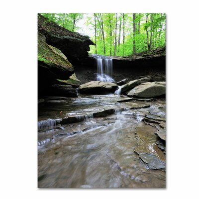 Trademark Fine Art 'Blue Hen Falls in Spring' by Kurt Shaffer Framed Photographic Print on Wrapped Canvas