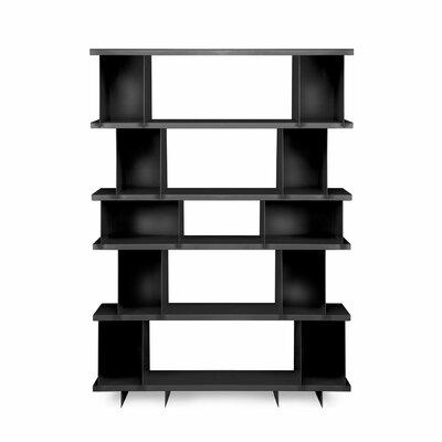 Shilf Version Standard Bookcase Color: Black