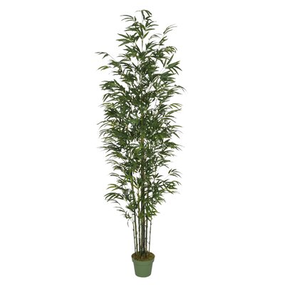 Dany Artificial Bamboo Tree in Pot Base color: Green