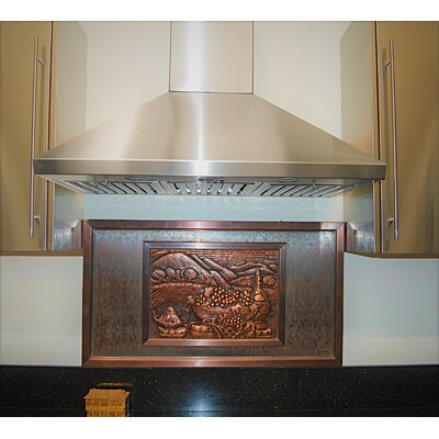 "30"" Brillia 750 CFM Ducted Wall Mount Range Hood"
