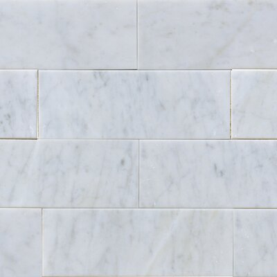 "3"" x 8"" Marble Subway Tile in White Carrara"