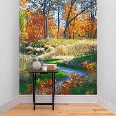 The Binary Box Autumn Scene Path Self Adhesive Wallpaper