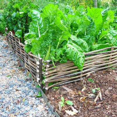 Chairworks High Vegetable Patch Border