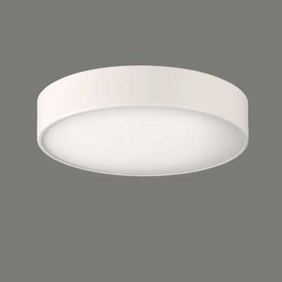 ACB Iluminacion Dins 2 Light Flush Ceiling Light