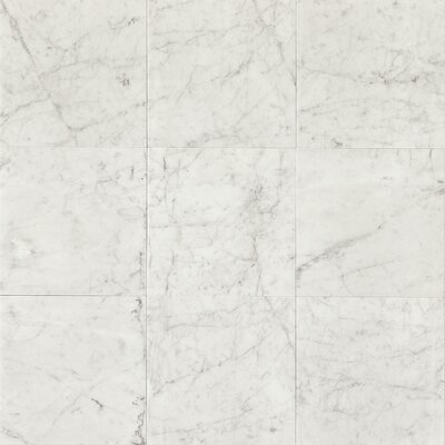 "12"" x 12"" Marble Field Tile in White Carrara"