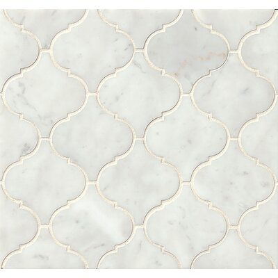 Polished Marble Mosaic Tile in White Carrara