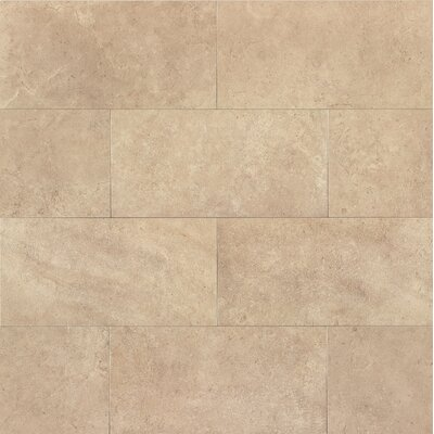 "Tribeca 12"" x 24"" Porcelain Field Tile in Watts"