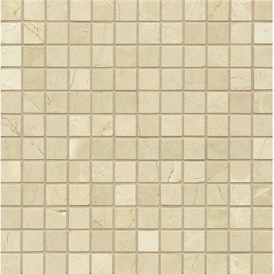 "1"" x 1"" Marble Mosaic Tile in Polished Crema Marfil Select"