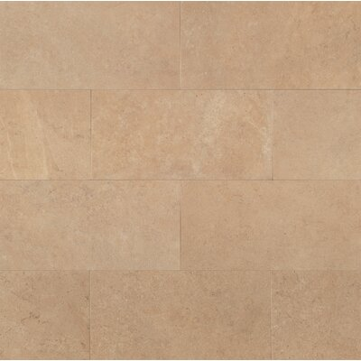 "Tribeca 12"" x 24"" Porcelain Field Tile in Harrison"