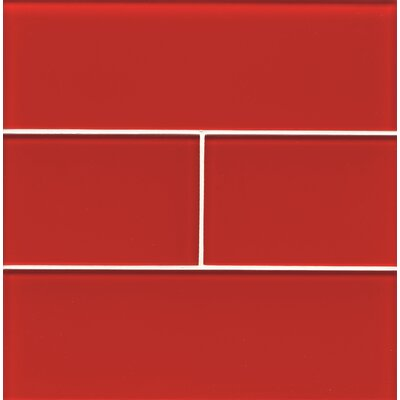 "Harbor Glass 4"" x 12"" Glass Gloss Field Tile in Life Saver"
