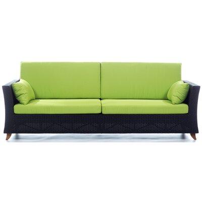 Rattan Deep Seating Sofa with Cushions Fabric: Green
