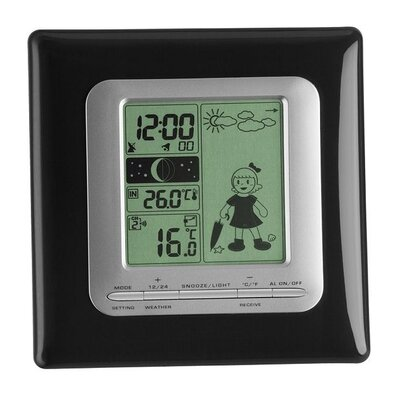 Green Wash Kitty Wireless Weather Station