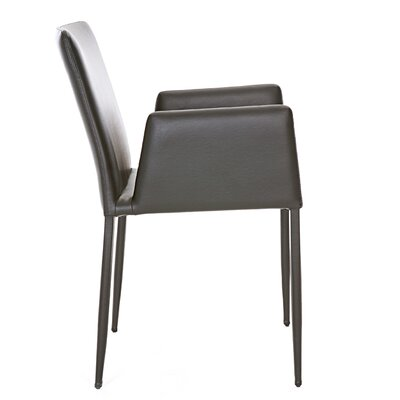 Frame Eco Leather Arm Chair Upholstery: Eco Leather