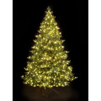 Snowtime 7.5' Green Pre-Lit Alaskan Spruce Artificial Christmas Tree with 750 Clear Lights