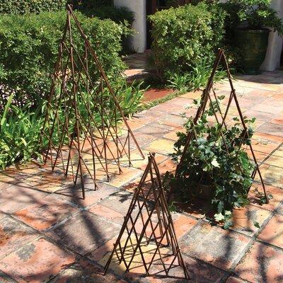 Natural Pyramid Trellis (Set of 4) Size: Medium