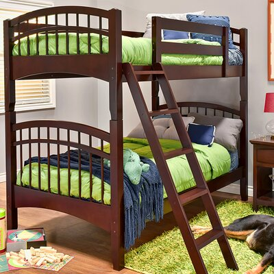 Mckenzie Twin over Twin Bunk Bed Color: Coffee
