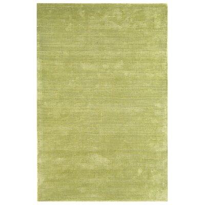 Asiatic Carpets Ltd. Bellagio Hand-Woven Green Area Rug