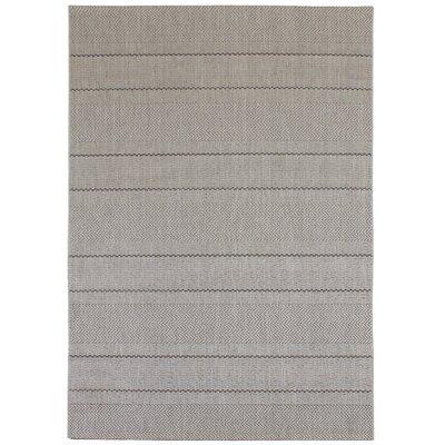 Asiatic Carpets Ltd. Patio Gray Area Rug