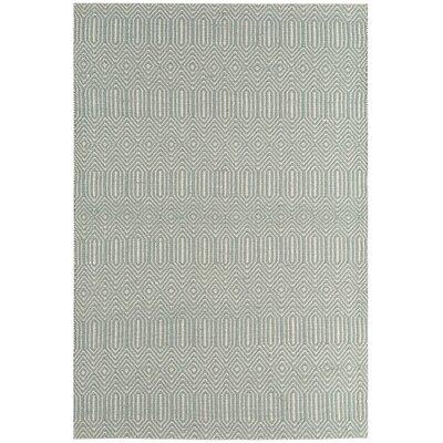 Asiatic Carpets Ltd. Sloan Hand-Woven Duck Egg Blue Area Rug