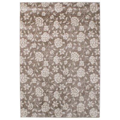Asiatic Carpets Ltd. Couture Beige Area Rug