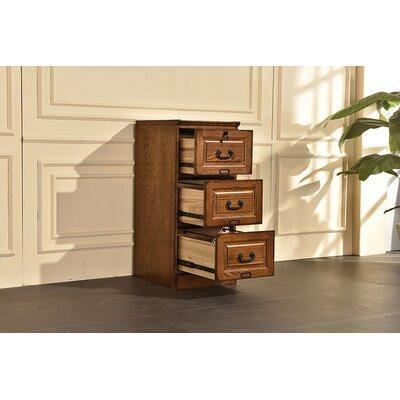 Sarthak 3 Drawer Vertical Filing Cabinet