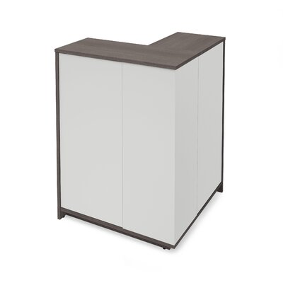 Accent Cabinet Color: Bark Gray/White