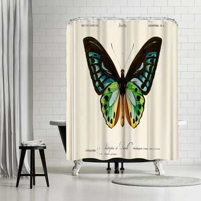 Adams Ale Insectes Shower Curtain