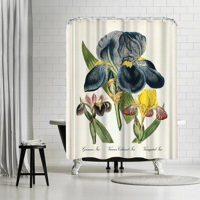 Adams Ale Iris Shower Curtain