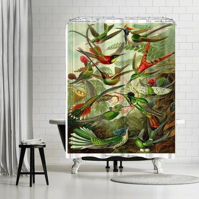Adams Ale Haeckel Plate Shower Curtain