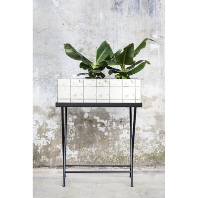Gaiter Tray Plant Stand