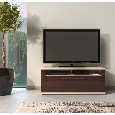 Wydra TV Stand Color: Coimbra/Brown