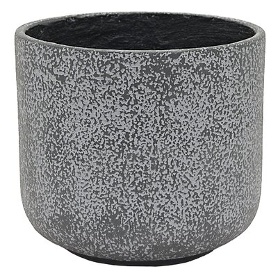 "Caywood Resin Pot Planter Size: 12"" H x 14.75"" W x 14.75"" D"